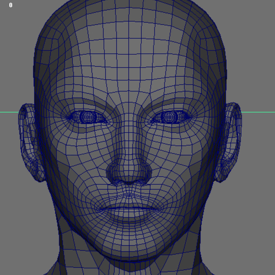 Human Male Base Mesh royalty-free 3d model - Preview no. 29