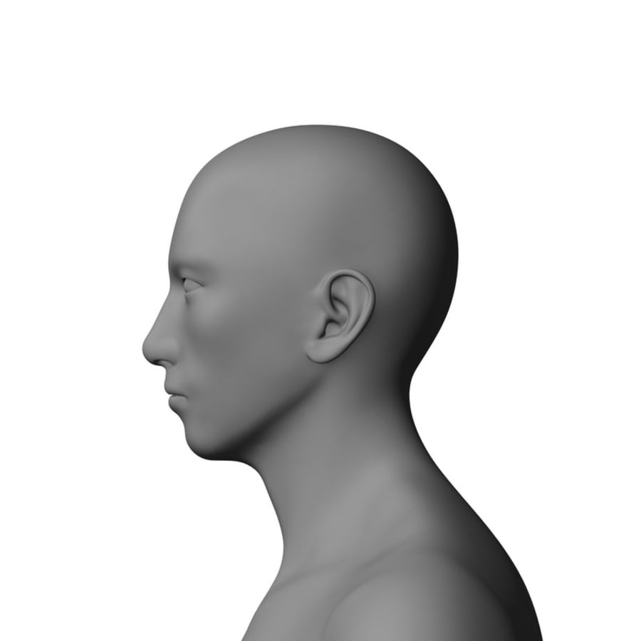 Human Male Base Mesh royalty-free 3d model - Preview no. 7