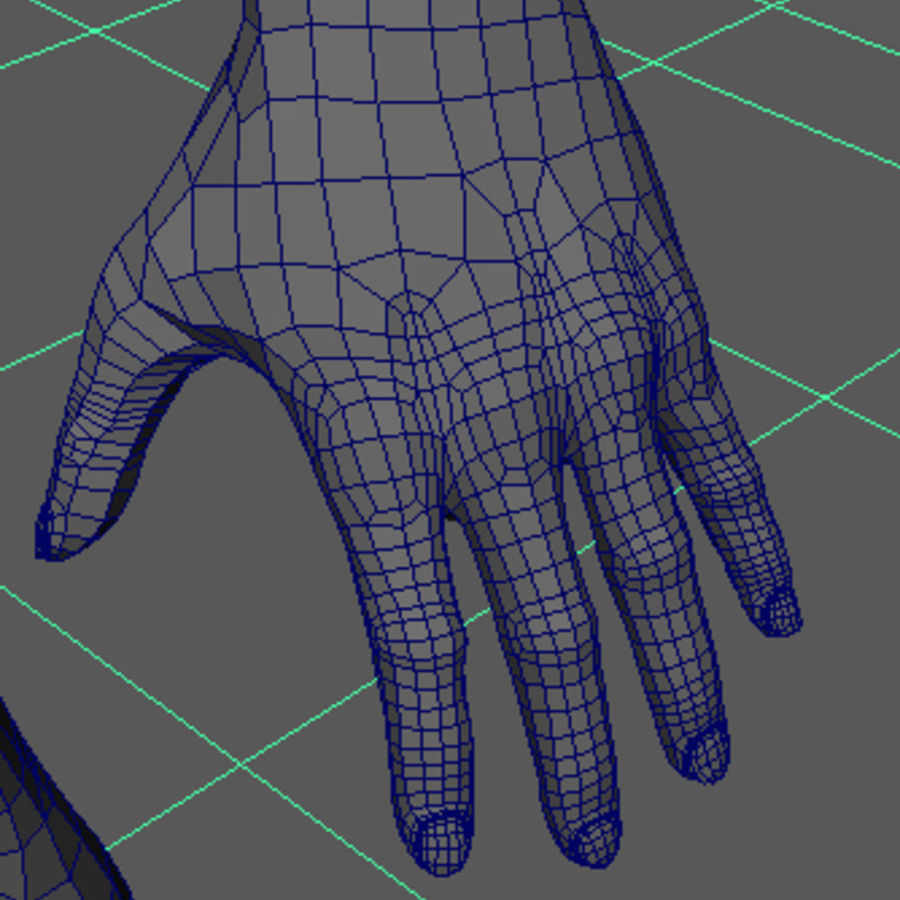 Human Male Base Mesh royalty-free 3d model - Preview no. 27