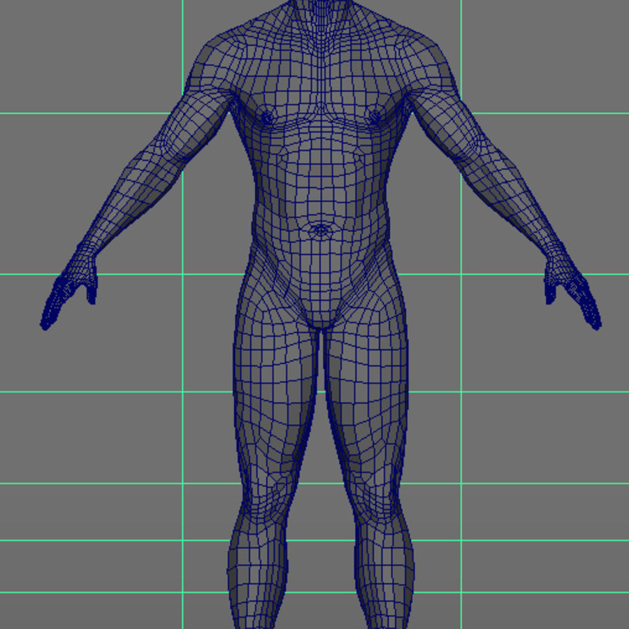 Malha de Base Masculina Humana royalty-free 3d model - Preview no. 25