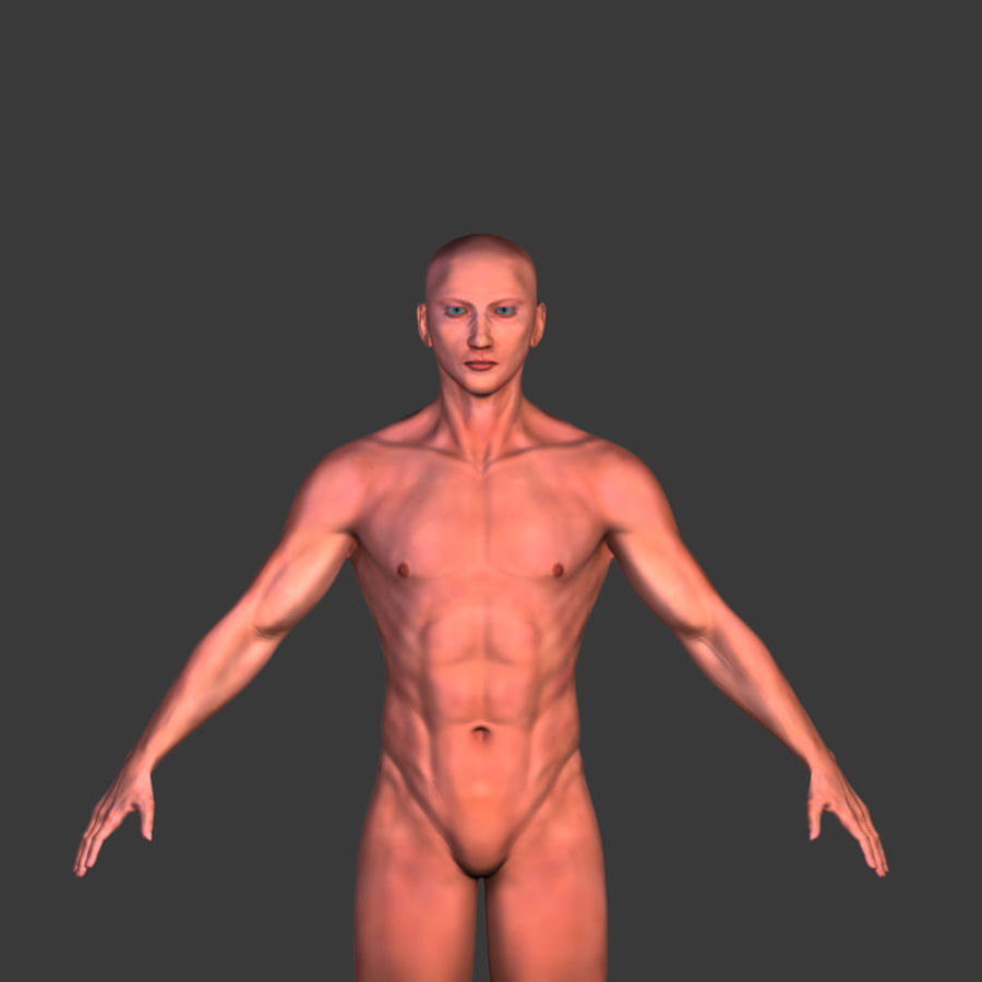 Malla de base masculina royalty-free modelo 3d - Preview no. 2