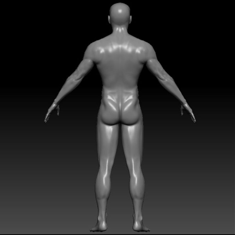 Malla de base masculina royalty-free modelo 3d - Preview no. 48