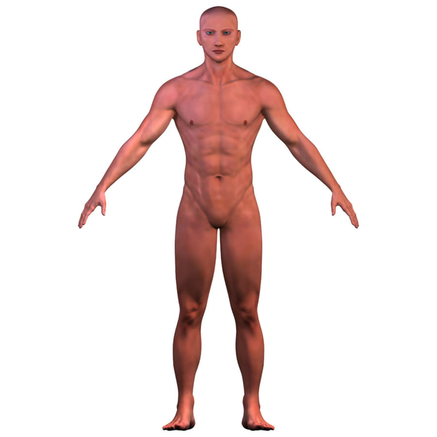 Malla de base masculina royalty-free modelo 3d - Preview no. 9