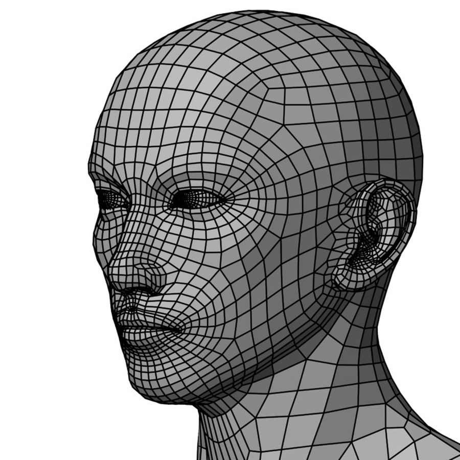 Male Base Mesh royalty-free 3d model - Preview no. 38