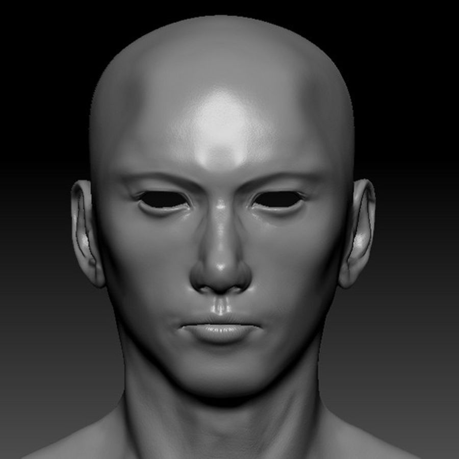 Male Base Mesh royalty-free 3d model - Preview no. 44