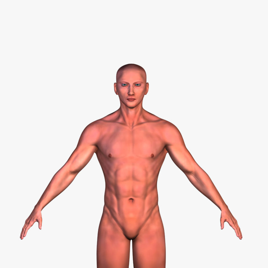 Malla de base masculina royalty-free modelo 3d - Preview no. 1