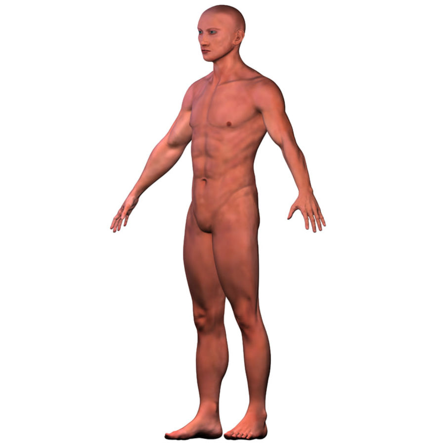Malla de base masculina royalty-free modelo 3d - Preview no. 8
