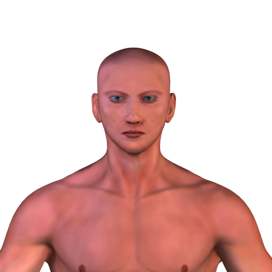 Malha Base Masculina royalty-free 3d model - Preview no. 6