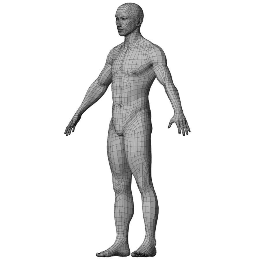 Malla de base masculina royalty-free modelo 3d - Preview no. 42