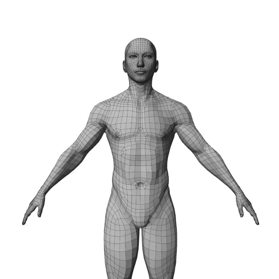 Malla de base masculina royalty-free modelo 3d - Preview no. 35