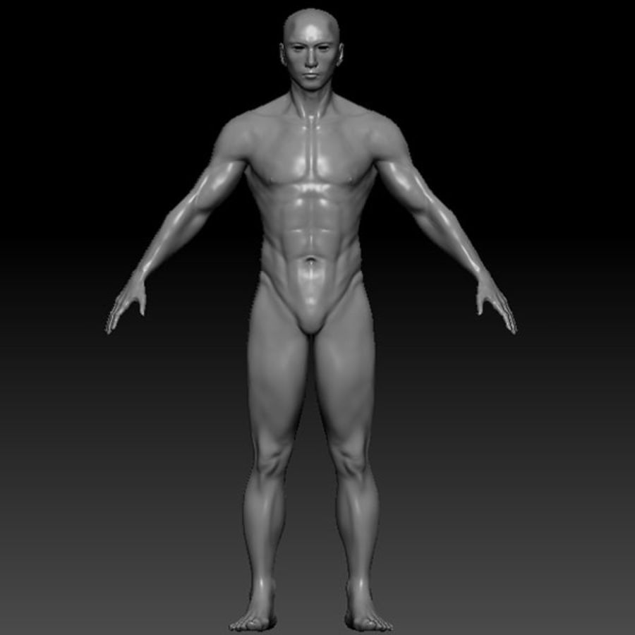 Malla de base masculina royalty-free modelo 3d - Preview no. 46