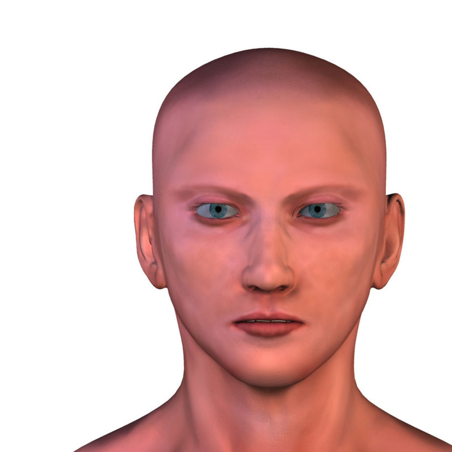 Male Base Mesh royalty-free 3d model - Preview no. 17