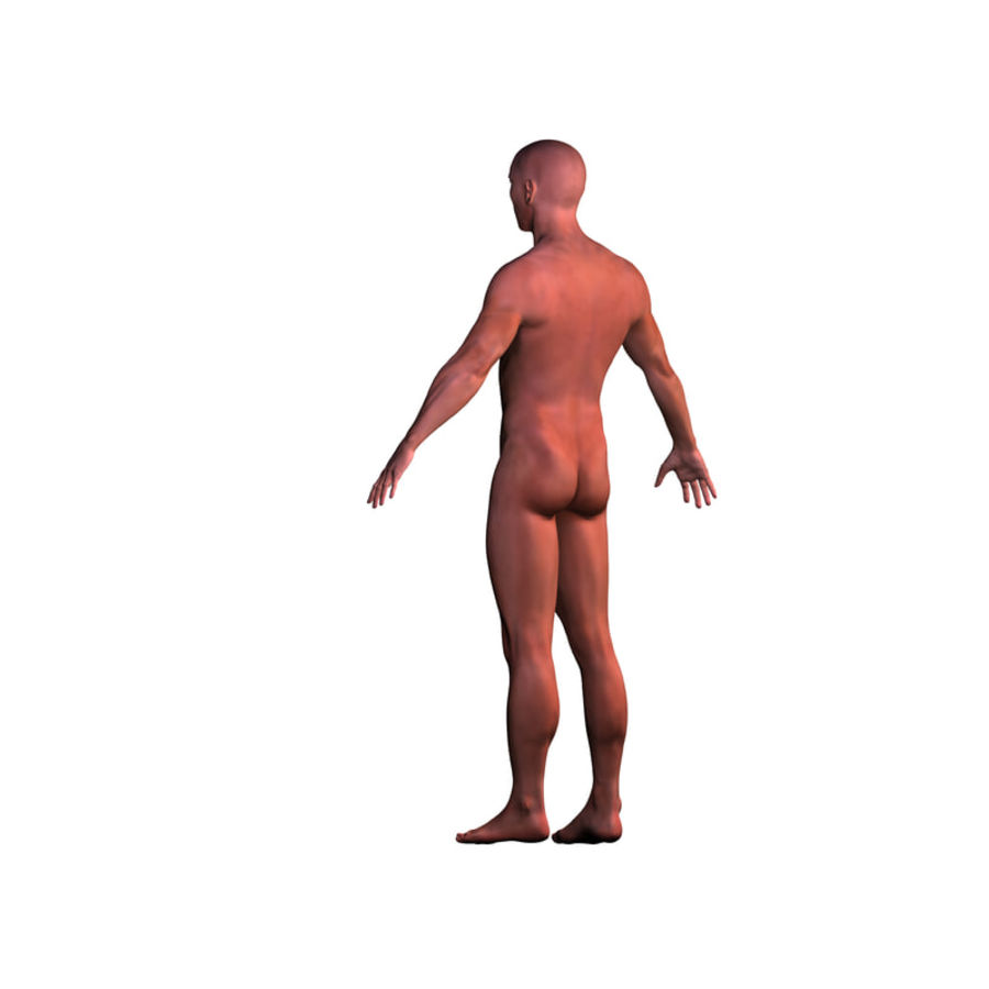 Malla de base masculina royalty-free modelo 3d - Preview no. 4