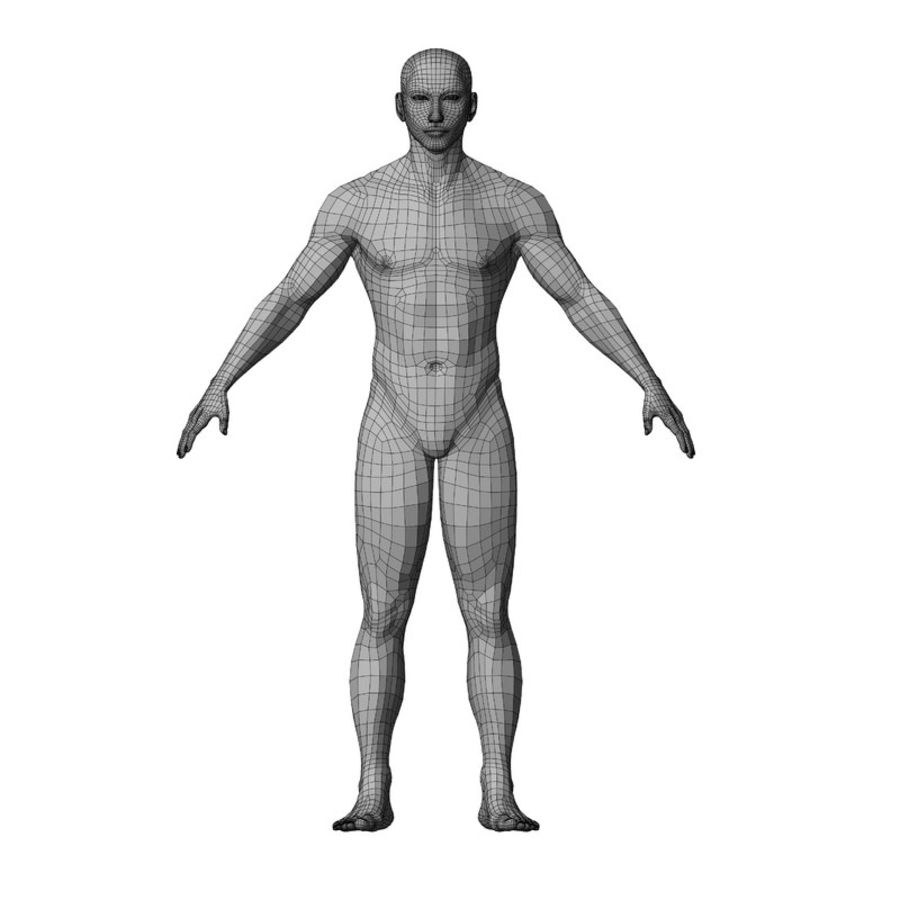 Male Base Mesh royalty-free 3d model - Preview no. 31