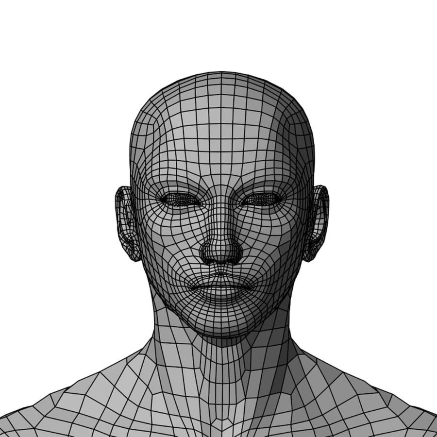 Male Base Mesh royalty-free 3d model - Preview no. 36