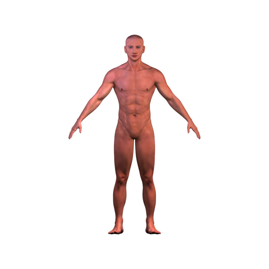 Malla de base masculina royalty-free modelo 3d - Preview no. 7