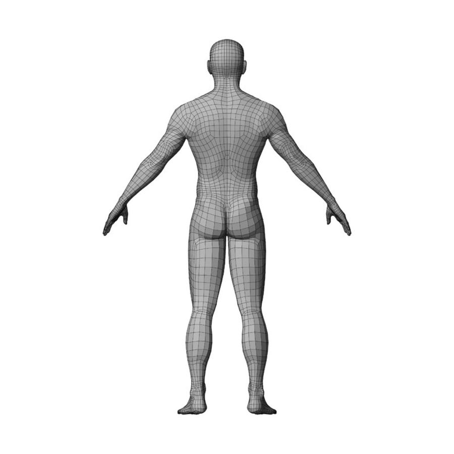 Malla de base masculina royalty-free modelo 3d - Preview no. 32
