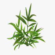 plant_16 3d model