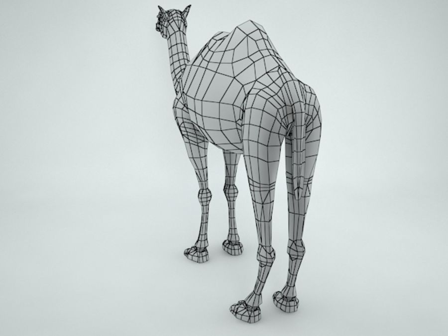 camel royalty-free 3d model - Preview no. 13