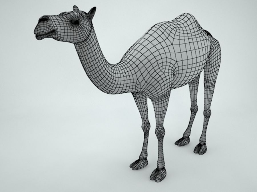 camel royalty-free 3d model - Preview no. 12