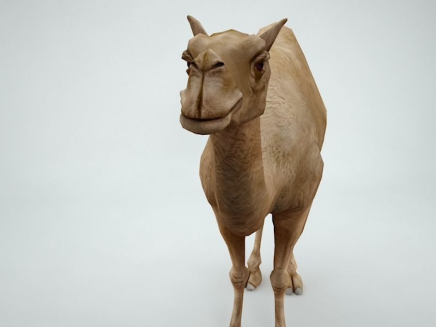 camel royalty-free 3d model - Preview no. 7