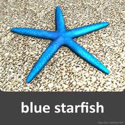 Blue starfish 3d model