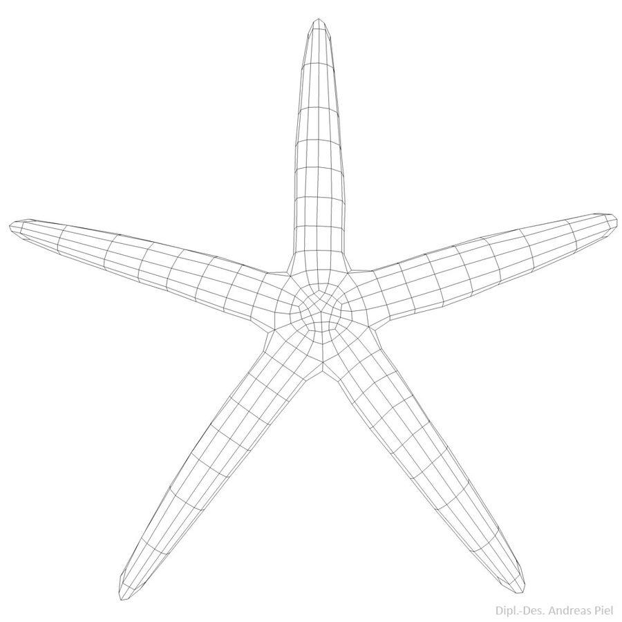 Blue starfish 3D Model $8 - .obj .fbx .dae .c4d .3ds - Free3D