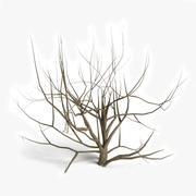 Dead Bush 1 3d model