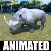 African Rhino 3d model
