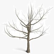 Árvore morta 1 3d model