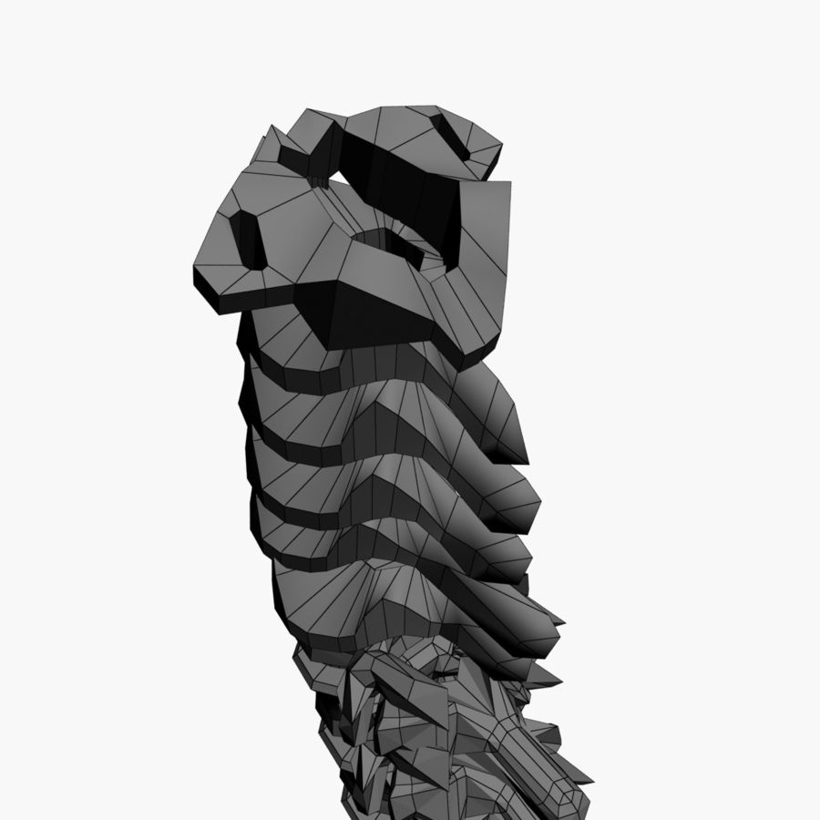 Spine 3D Model $9 -  max - Free3D
