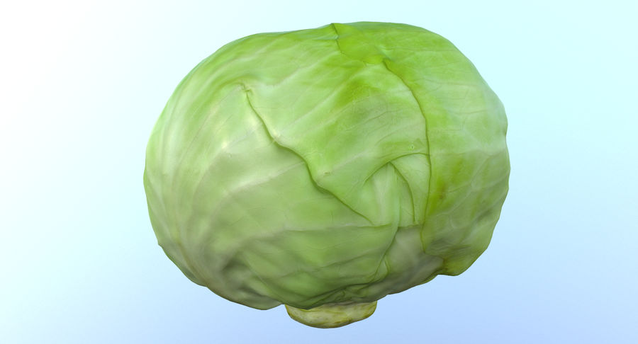 High Poly Cabbage royalty-free 3d model - Preview no. 4