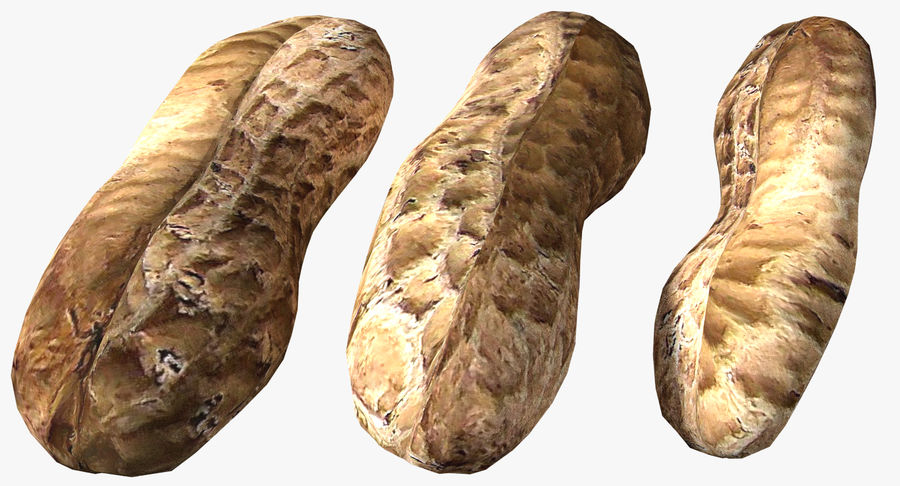 Roasted Peanut royalty-free 3d model - Preview no. 2