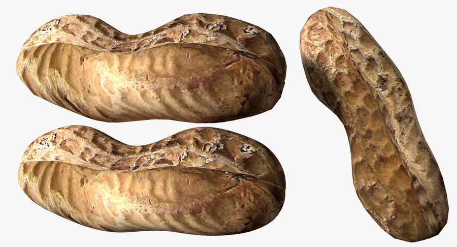 Roasted Peanut royalty-free 3d model - Preview no. 5