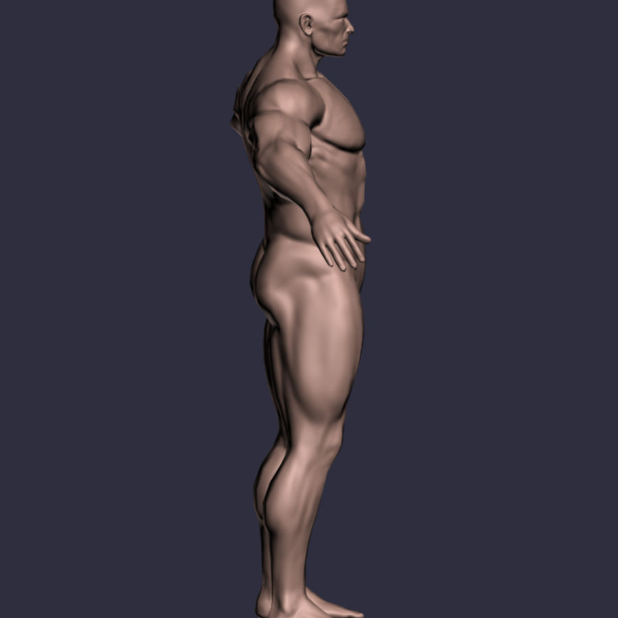 Male A-Posed Character royalty-free 3d model - Preview no. 2