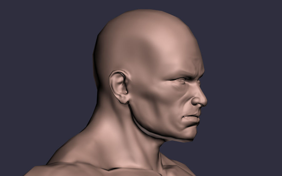 Male A-Posed Character royalty-free 3d model - Preview no. 5