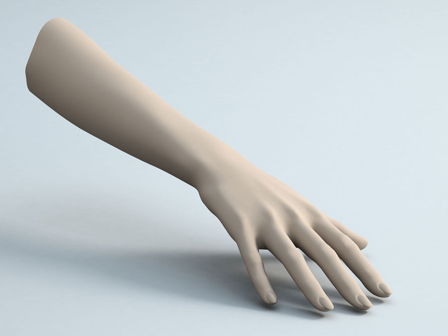 Female Arm A royalty-free 3d model - Preview no. 5
