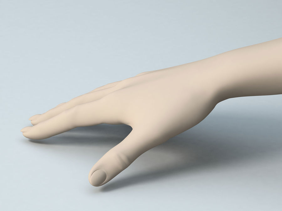 Female Arm A royalty-free 3d model - Preview no. 2