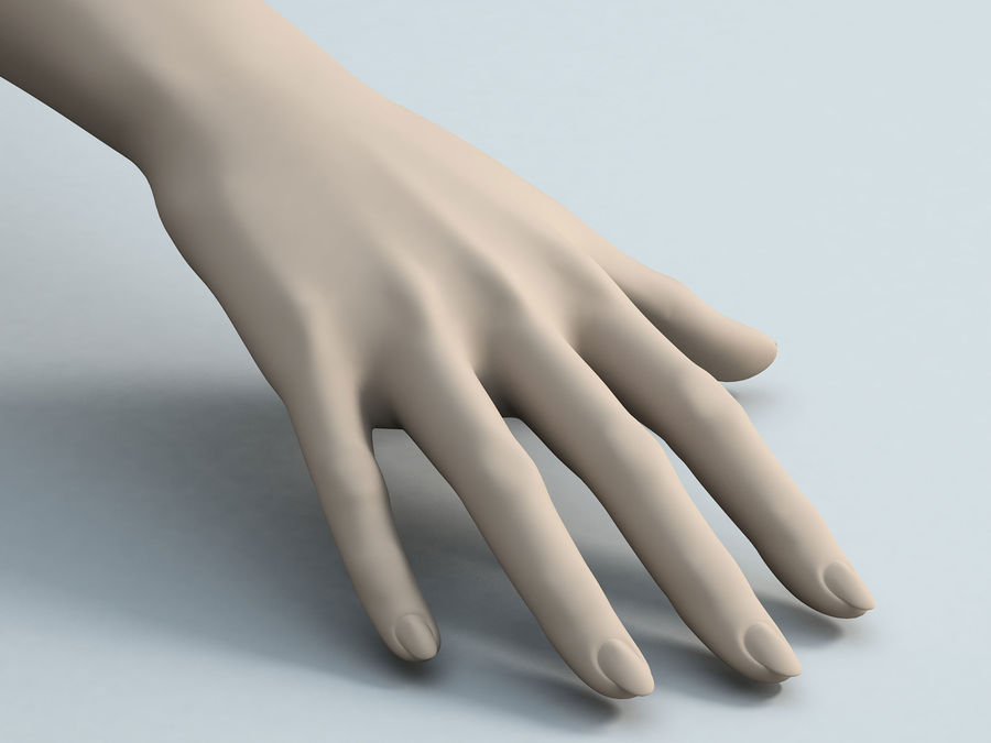 Female Arm A royalty-free 3d model - Preview no. 4