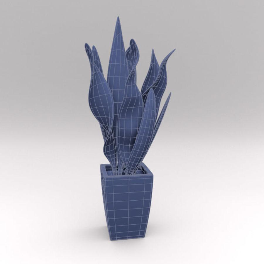 Ornamental Pot Plant royalty-free 3d model - Preview no. 5