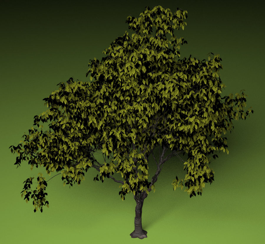 High + low poly trees royalty-free 3d model - Preview no. 4