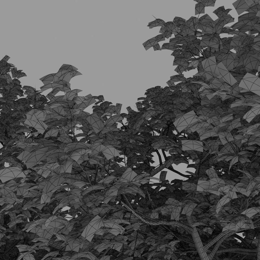 oak tree royalty-free 3d model - Preview no. 10