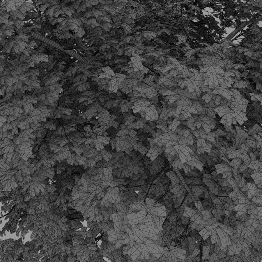 oak tree royalty-free 3d model - Preview no. 9