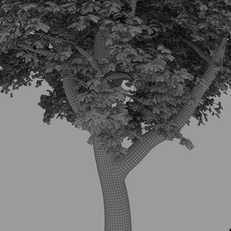 oak tree royalty-free 3d model - Preview no. 7