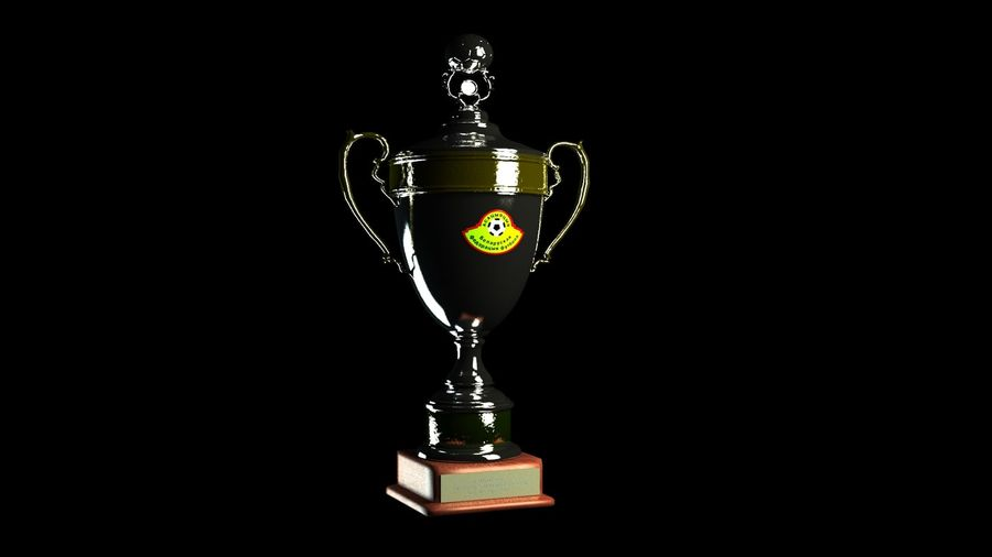 Belarussian Champion Cup royalty-free 3d model - Preview no. 2