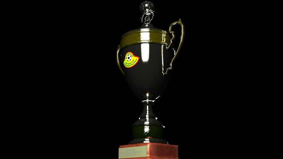Belarussian Champion Cup royalty-free 3d model - Preview no. 3