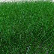 Low poly grass high quality 3d model