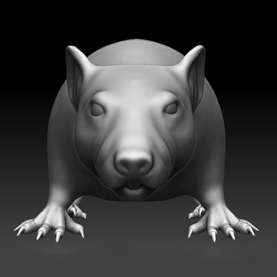 Sculpted Rat royalty-free 3d model - Preview no. 2