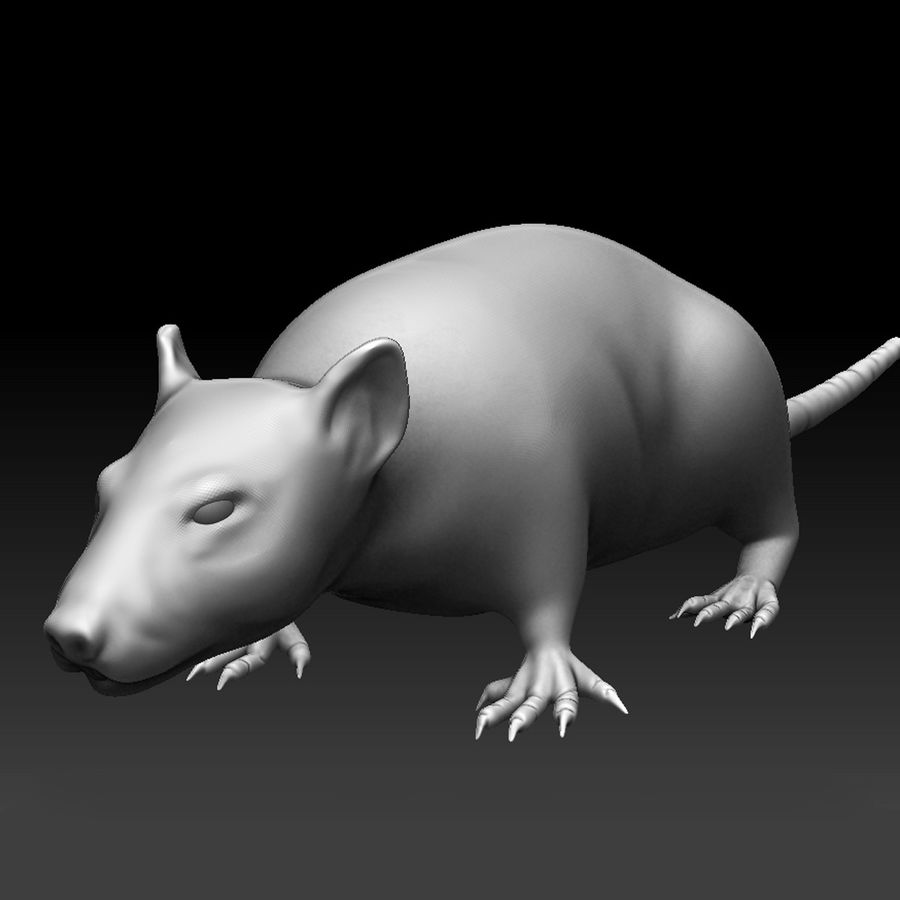 Sculpted Rat royalty-free 3d model - Preview no. 1