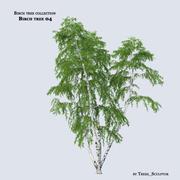 Birch tree 04 3d model